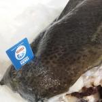 IV Semana gastronómica del Bacalao SKREI en Lastres